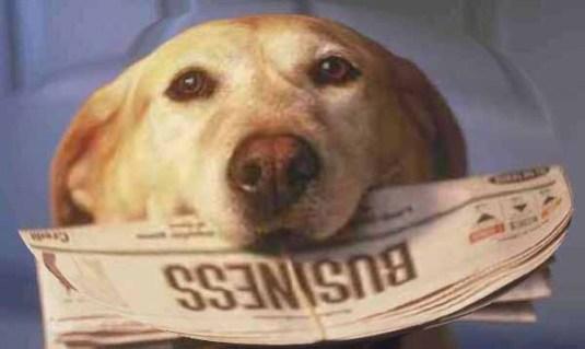 doggy-y-mi-periodico